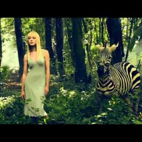 Klimatyczna sesja w lesie z zebrą w tle