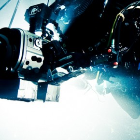Michael Muller i jego podwodne studio do fotografii rekinów