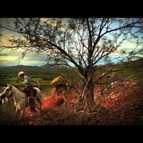 Kowboje, naturalne światło i średni format