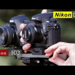 Porównanie aparatów Canon 5D Mark III vs Nikon D800 w filmowaniu