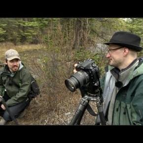Zobacz jak sprawuje się Nikon D800E w krajobrazie z 645DPentaxem
